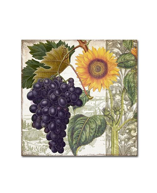 """Trademark Global Color Bakery 'Dolcetto I' Canvas Art - 24"""" x 2"""" x 24"""""""