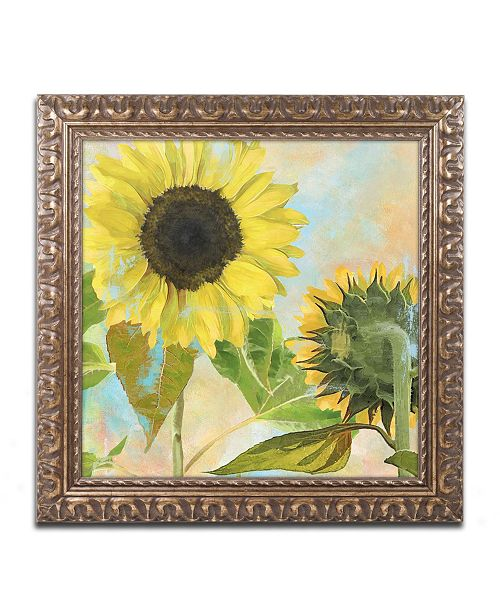 "Trademark Global Color Bakery 'Soleil I' Ornate Framed Art - 16"" x 0.5"" x 16"""