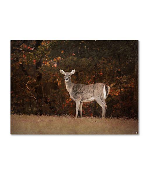 "Trademark Global Jai Johnson 'Autumn Doe' Canvas Art - 19"" x 14"" x 2"""