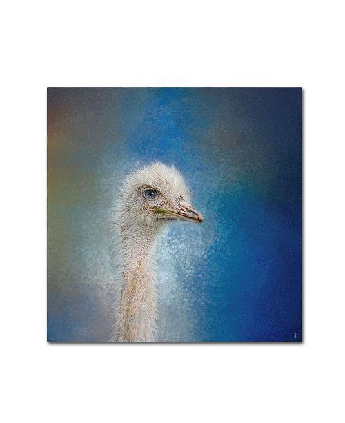 """Trademark Global Jai Johnson 'Blue Eyed Beauty Ostrich' Canvas Art - 18"""" x 18"""" x 2"""""""