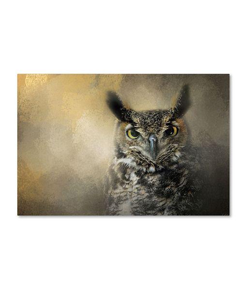 "Trademark Global Jai Johnson 'Golden Eyes Great Horned Owl' Canvas Art - 24"" x 16"" x 2"""