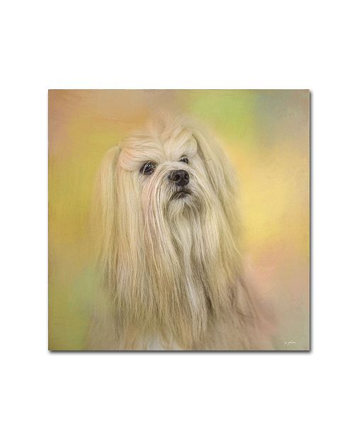 "Trademark Global Jai Johnson 'Spring Lhasa Apso' Canvas Art - 35"" x 35"" x 2"""
