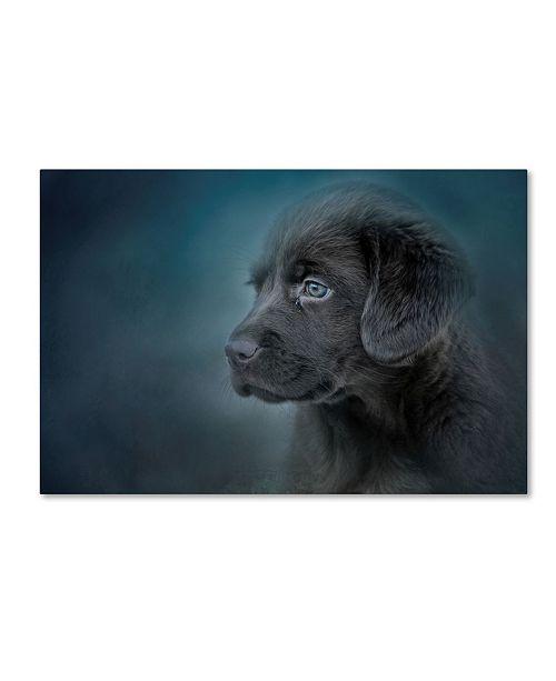 "Trademark Global Jai Johnson 'Blue Eyed Puppy' Canvas Art - 32"" x 22"" x 2"""
