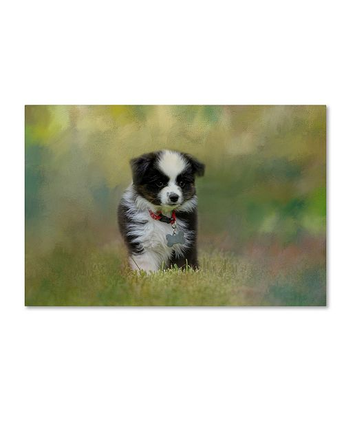"Trademark Global Jai Johnson 'Puppyhood 1' Canvas Art - 32"" x 22"" x 2"""