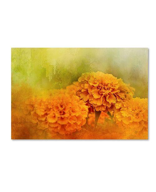 "Trademark Global Jai Johnson 'Fresh Autumn Flowers' Canvas Art - 47"" x 30"" x 2"""