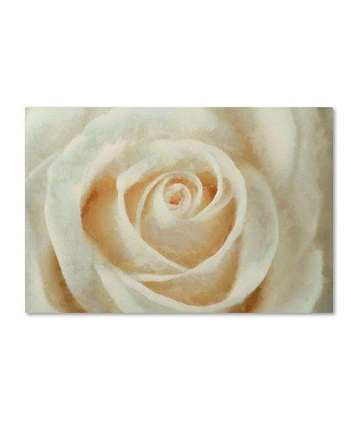 "Trademark Global Cora Niele 'White Rose' Canvas Art - 32"" x 22"" x 2"""