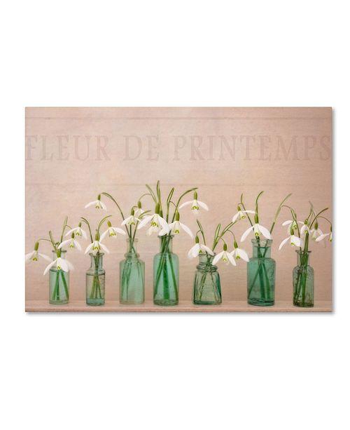 "Trademark Global Cora Niele 'The Magic Of Spring' Canvas Art - 19"" x 12"" x 2"""