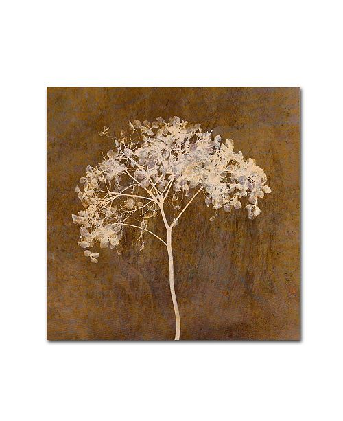 "Trademark Global Cora Niele 'Hortensia Silhouette Bronze' Canvas Art - 14"" x 14"" x 2"""