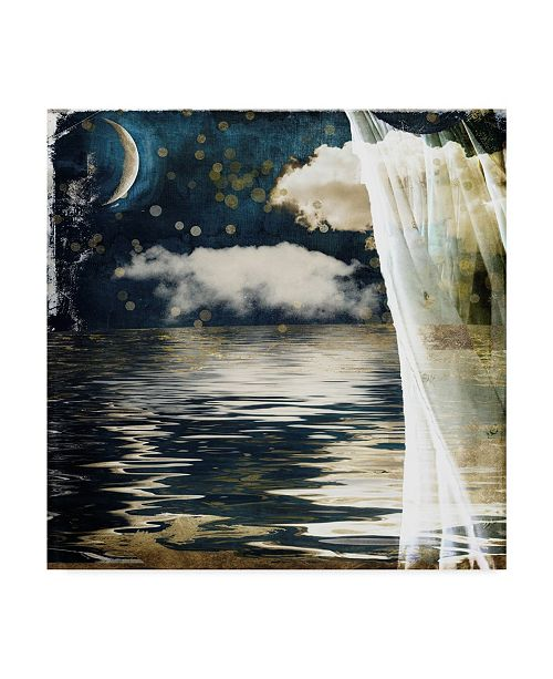 "Trademark Global Color Bakery 'Moon Lullaby' Canvas Art - 14"" x 14"" x 2"""