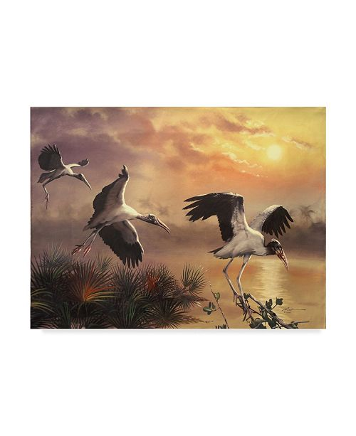 "Trademark Global D. Rusty Rust 'Wood storks' Canvas Art - 24"" x 18"" x 2"""