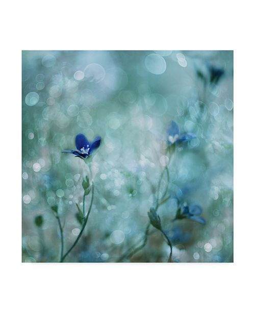 "Trademark Global Delphine Devos 'Blue Dream Land' Canvas Art - 24"" x 24"" x 2"""