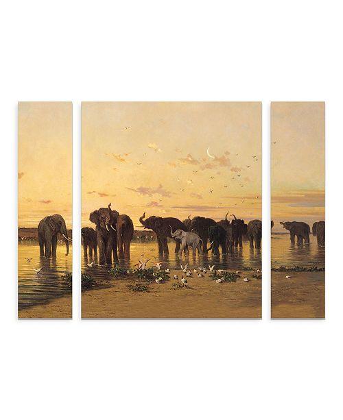 "Trademark Innovations Charles Emile De Tournemine 'African Elephants' Multi Panel Art Set Large 3 Piece - 44"" x 34"" x 2"""