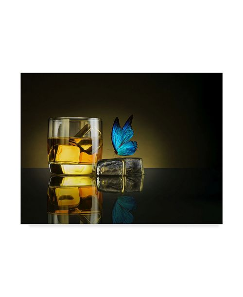 "Trademark Global Jackson Carvalho 'Butterfly Drink' Canvas Art - 19"" x 2"" x 14"""