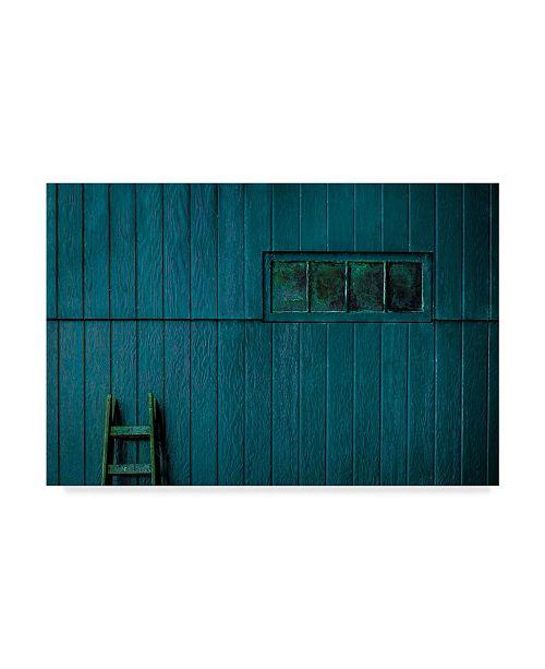 "Trademark Global Inge Schuster 'Blue Rustic' Canvas Art - 47"" x 2"" x 30"""