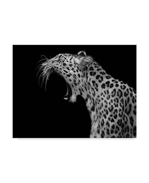 "Trademark Global David Williams 'Amur Leopard' Canvas Art - 24"" x 2"" x 18"""
