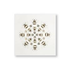 Graham & Brown Beautiful Bees Canvas Wall Art