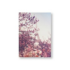 Paris In Bloom Canvas Wall Art