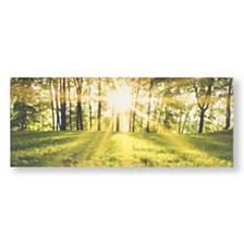 Graham & Brown Tranquil Forest Fields Canvas Wall Art