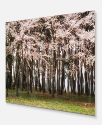 ... Design Art Designart U0027Cherry Blossoms In Pine Treeu0027 Landscape Metal  Wall Art   ...