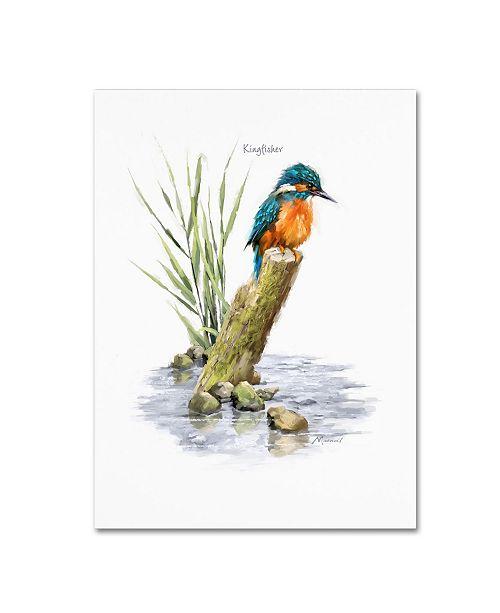 "Trademark Global The Macneil Studio 'Kingfisher' Canvas Art - 19"" x 14"" x 2"""
