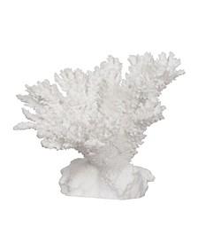 """9.5"""" Coral Decor"""