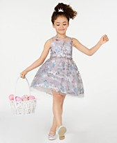 f21e8ebb603f5 Rare Editions Toddler Girls Embroidered Illusion Dress