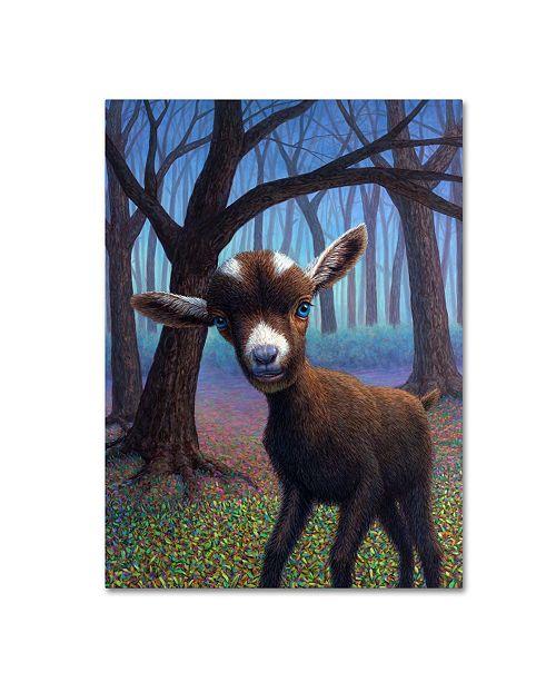 "Trademark Global James W. Johnson 'Extrovert' Canvas Art - 47"" x 35"" x 2"""