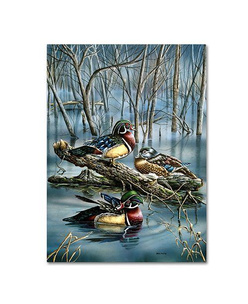 "Trademark Global Wanda Mumm 'Misty Woodducks' Canvas Art - 24"" x 18"" x 2"""