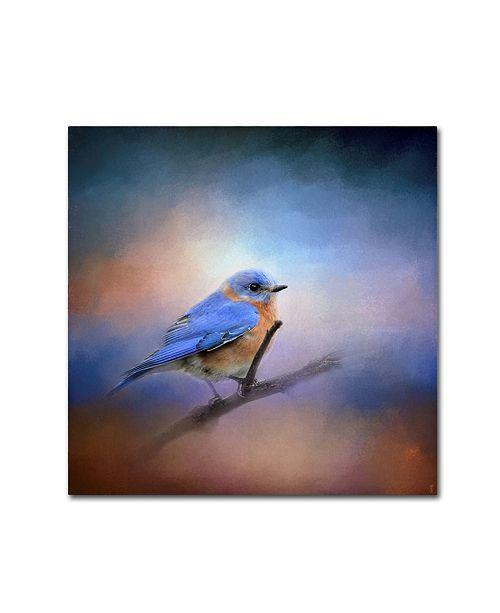 "Trademark Global Jai Johnson 'The Happiest Blue' Canvas Art - 18"" x 18"" x 2"""