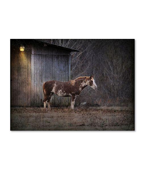 "Trademark Global Jai Johnson 'Waiting For Winter Horse' Canvas Art - 32"" x 24"" x 2"""