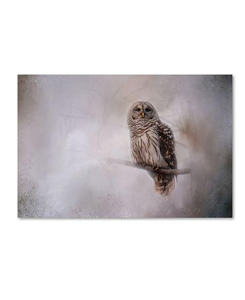 "Trademark Global Jai Johnson 'Winter Owl' Canvas Art - 32"" x 22"" x 2"""
