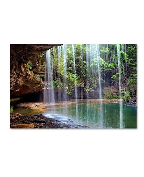 "Trademark Global Mike Jones Photo 'Alabama Caney Creek Veil' Canvas Art - 47"" x 30"" x 2"""