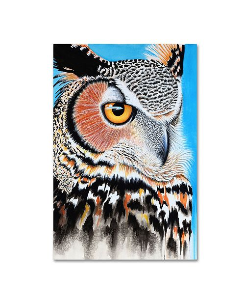 "Trademark Global Michelle Faber 'Great Horned Owl Eye' Canvas Art - 19"" x 12"" x 2"""
