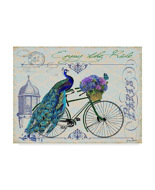 "Trademark Global Jean Plout 'Peacock On Bicycle' Canvas Art - 24"" x 18"" x 2"""