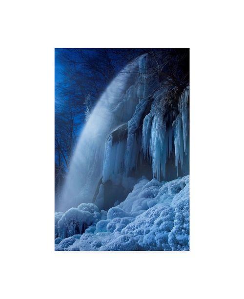 """Trademark Global Nicolas Schumacher 'Frozen In The Moonlight' Canvas Art - 16"""" x 2"""" x 24"""""""
