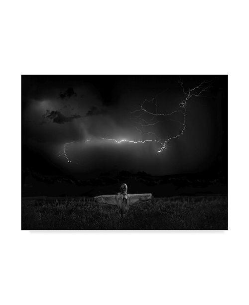 "Trademark Global Yvette Depaepe 'The Scarecrow Landscape' Canvas Art - 19"" x 2"" x 14"""