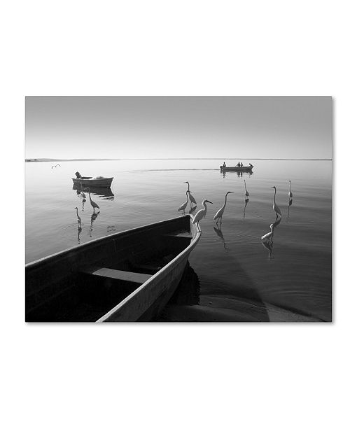 """Trademark Global Moises Levy 'Herons and 3 Boats' Canvas Art - 32"""" x 24"""" x 2"""""""