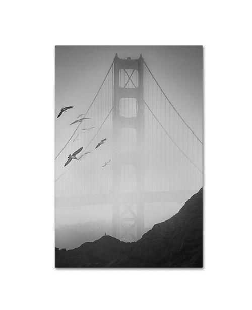 "Trademark Global Moises Levy 'Golden Gate Pier and Birds I' Canvas Art - 24"" x 16"" x 2"""
