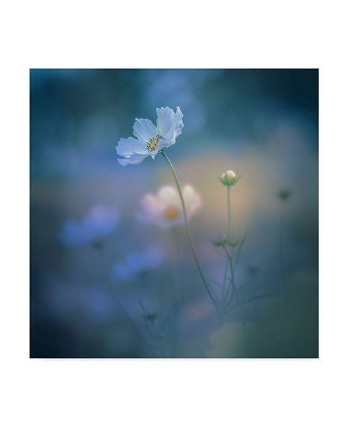 """Trademark Global Miyako Koumura 'White Shadow' Canvas Art - 14"""" x 14"""" x 2"""""""