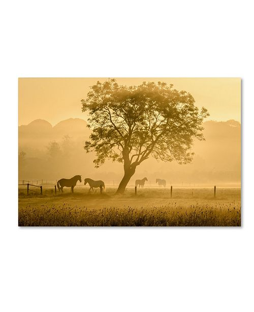 "Trademark Global Richard Guijt 'Golden Horses' Canvas Art - 19"" x 12"" x 2"""
