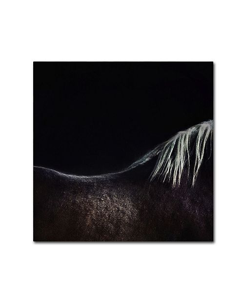 "Trademark Global Piet Flour 'The Naked Horse' Canvas Art - 18"" x 18"" x 2"""