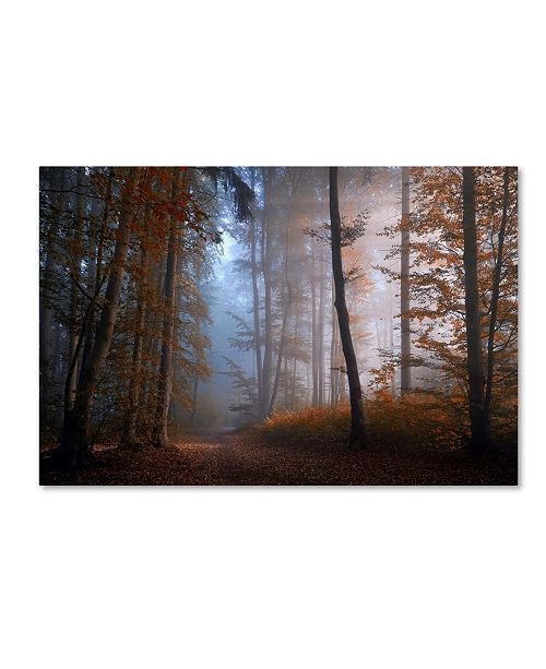 "Trademark Innovations Norbert Maier 'Autumn Colors' Canvas Art - 19"" x 12"" x 2"""
