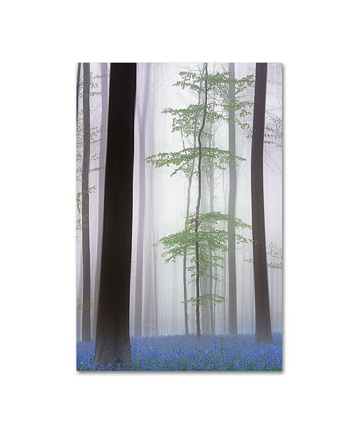 "Trademark Global Piet Haaksma 'Foggy Forest' Canvas Art - 32"" x 22"" x 2"""