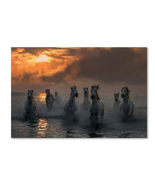 "Trademark Global Xavier Ortega 'Camargue On Fire' Canvas Art - 32"" x 22"" x 2"""