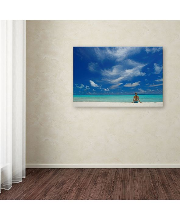 Trademark Global Robert Harding Picture Library Beachy 5 Canvas Art 47 X 30 X 2 Reviews All Wall Decor Home Decor Macy S While his installation based work is a. macy s