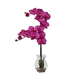 Phalaenopsis Orchid w/Vase Arrangement