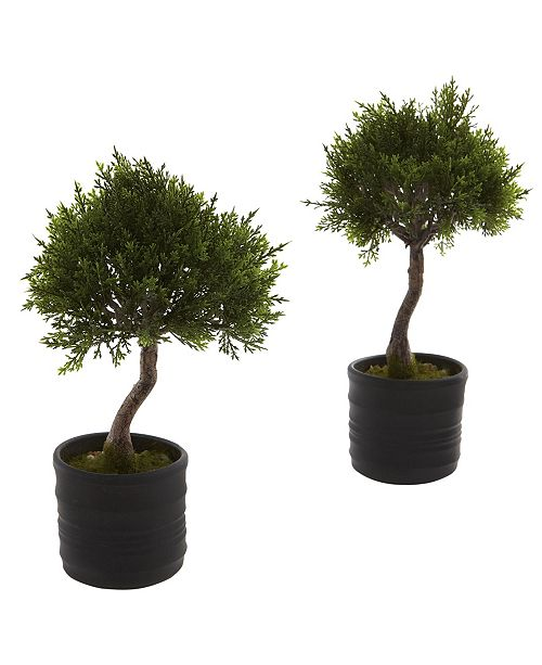 Nearly Natural Cedar Bonsai w/Planter, Set of 2