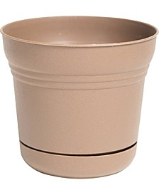 """5"""" Saturn Planter with Saucer"""
