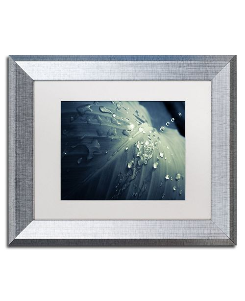 "Trademark Global PIPA Fine Art 'Rain Dropping on Canna Leaf' Matted Framed Art - 11"" x 14"""