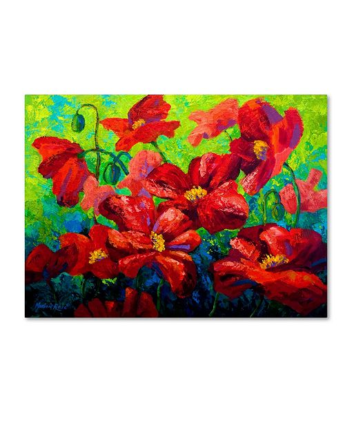 """Trademark Global Marion Rose 'Field of Poppies A' Canvas Art - 14"""" x 19"""""""